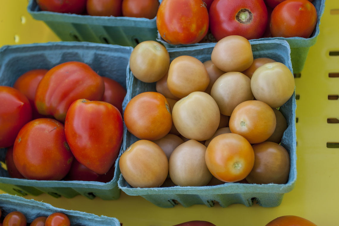 blog help your veggies survive the heat