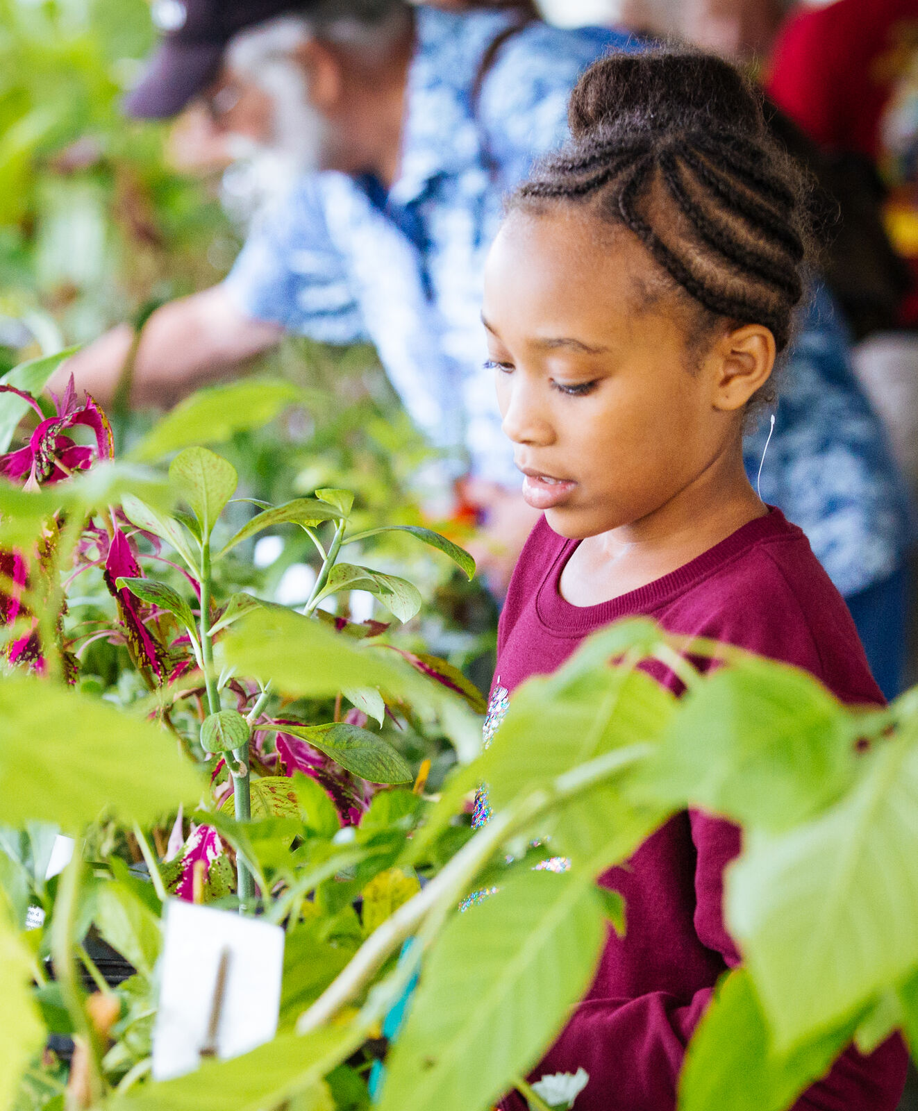 Young girl looking at plants.