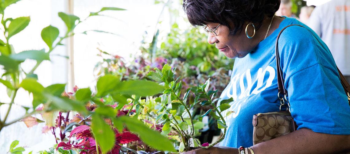 cal post flowershow plant sale mar 14 2020