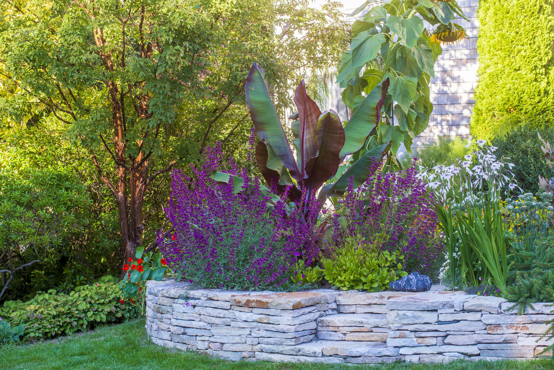 enews resolution for a healthy garden_2