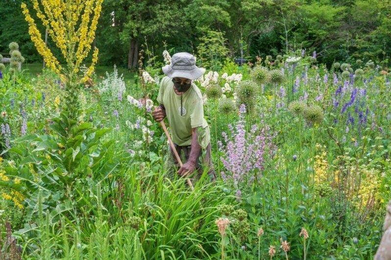 Glenn-Gardening_MBF