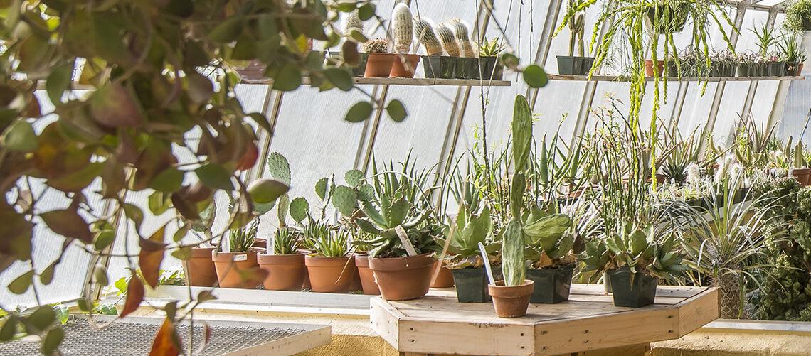 2020_MBF-PlantShop-Interior