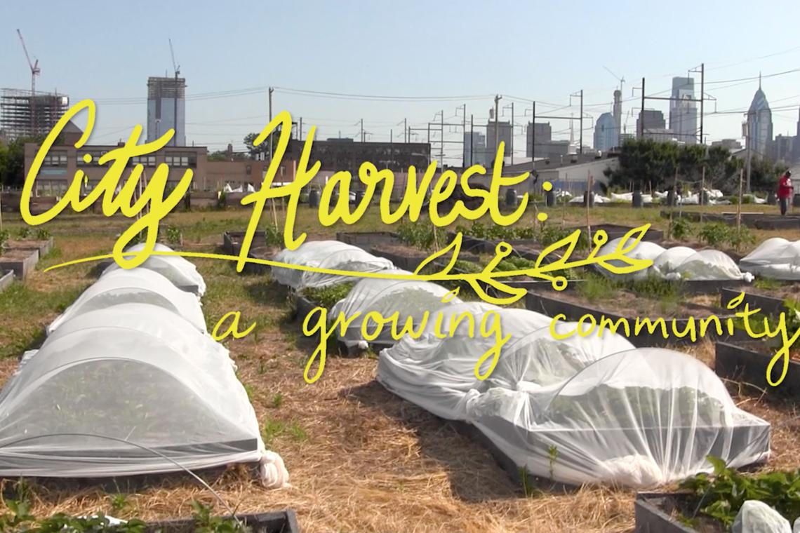 Event_City Harvest Docu Screening