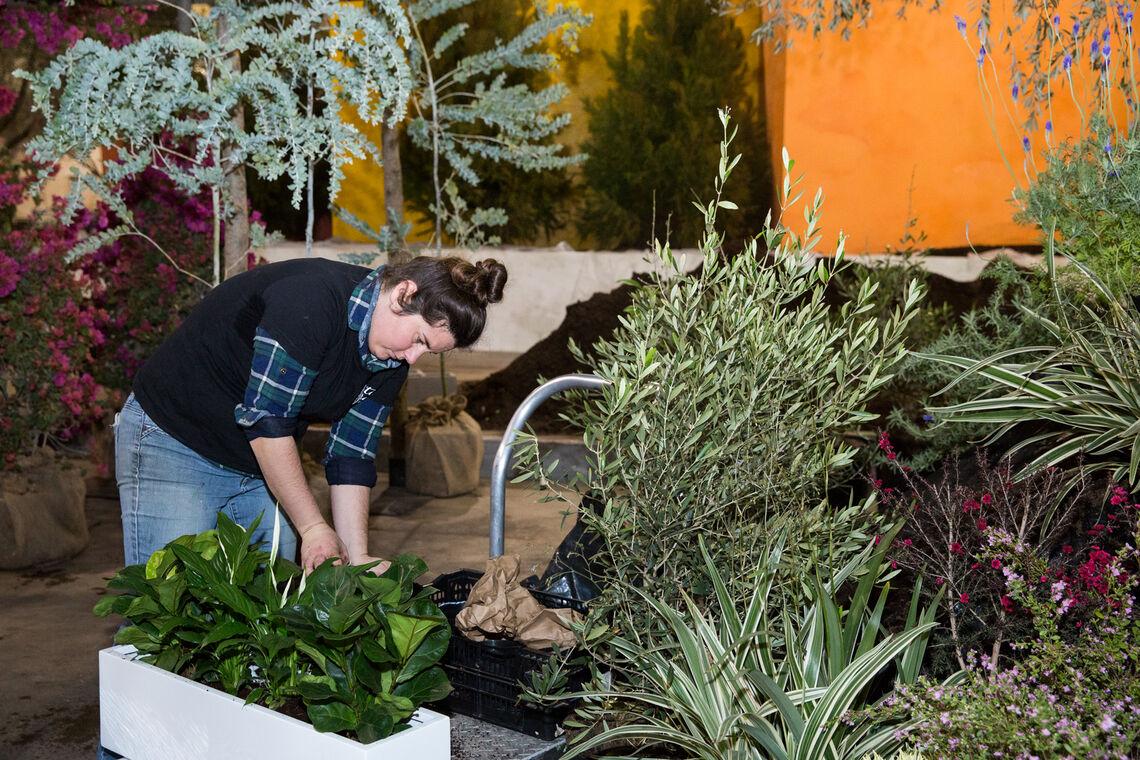 Petiti Jardin en Ville Set-up 2020