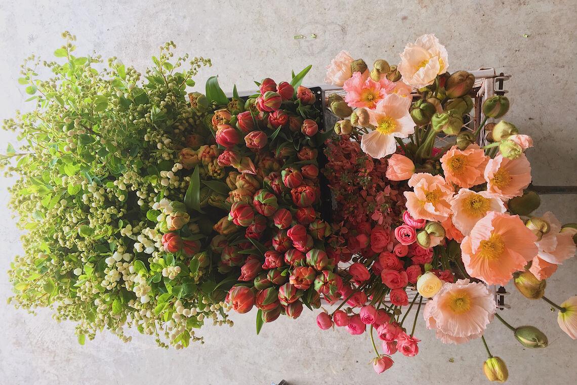 beautiful sustainable abundant flower gardens