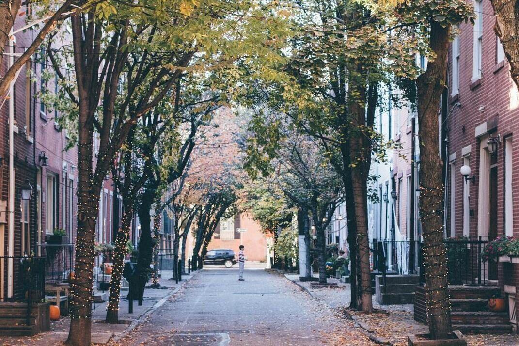 resized tree partnership blog photo