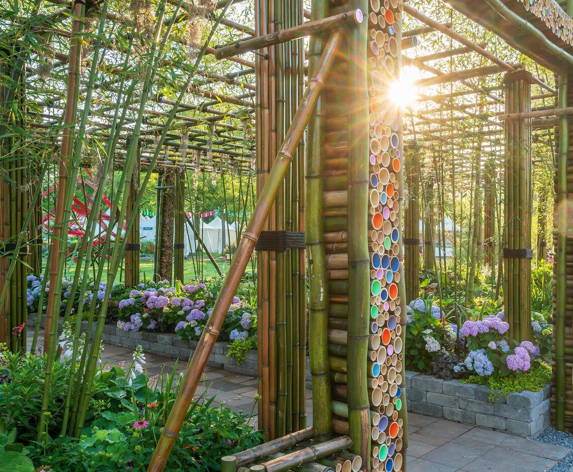 2021-Habitat_Treeline-Designz_exhibit