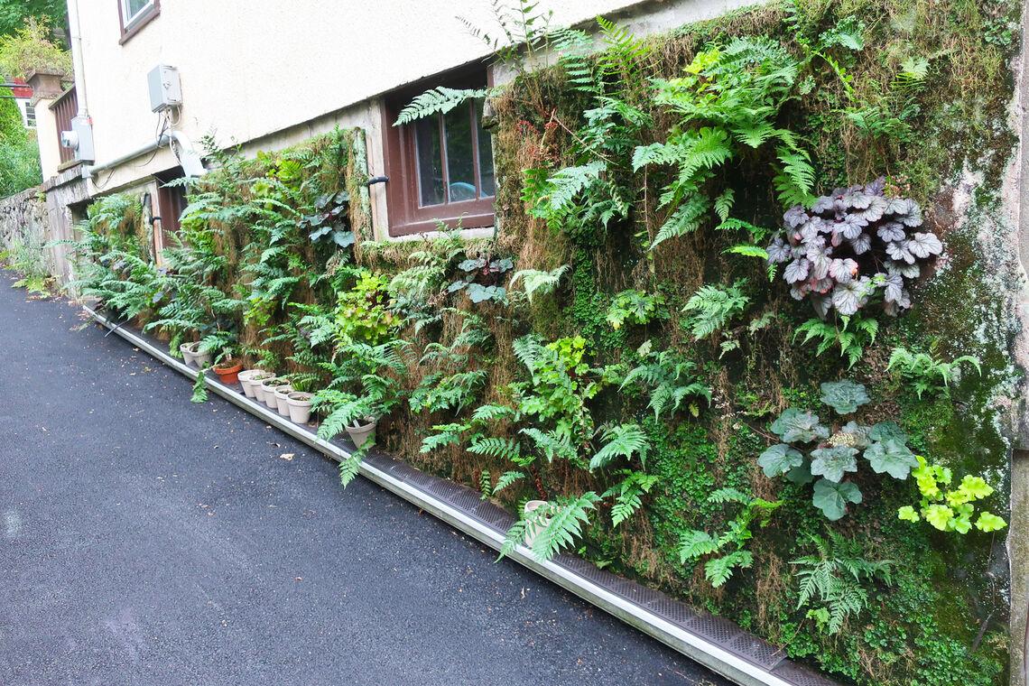 vertical gardening home