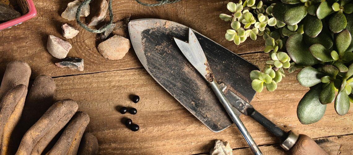 Garden Tools Spread